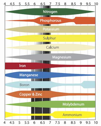 Cannabis Nutrient PH Ranges