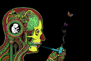 Cannabis Feed Your Head