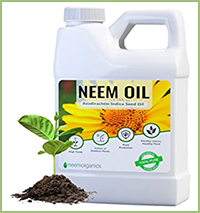 Neem Oil Insecticide & Fungicide