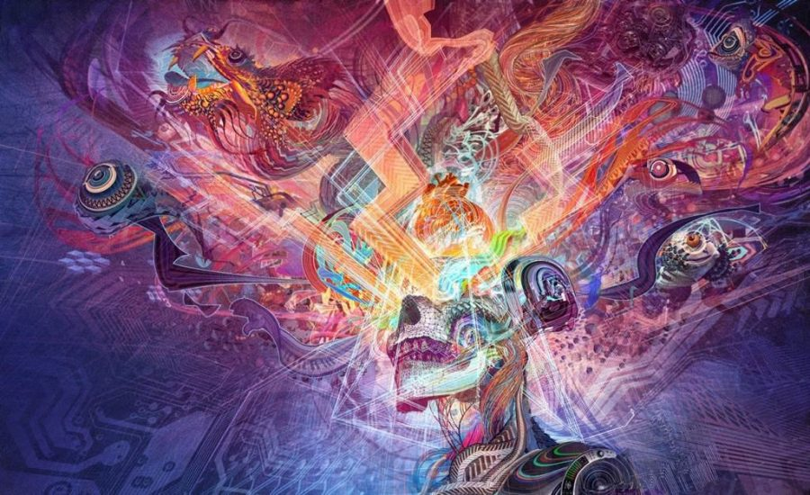Psychedelic Shamans