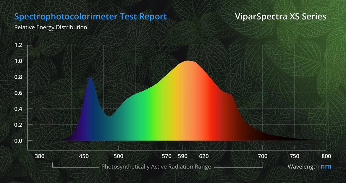 viparspectra-xs-series-distribution