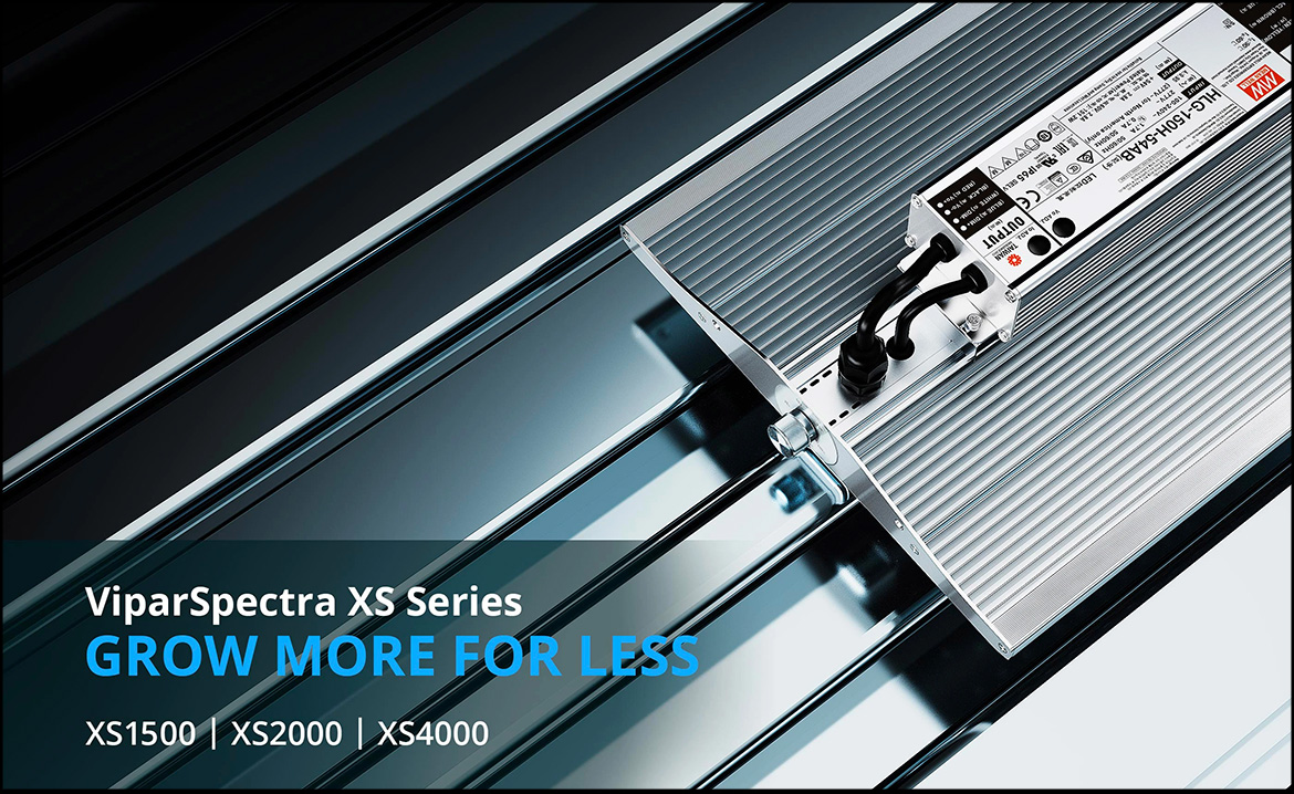 viparspectra-xs-series